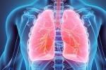 Siêu âm màng phổi